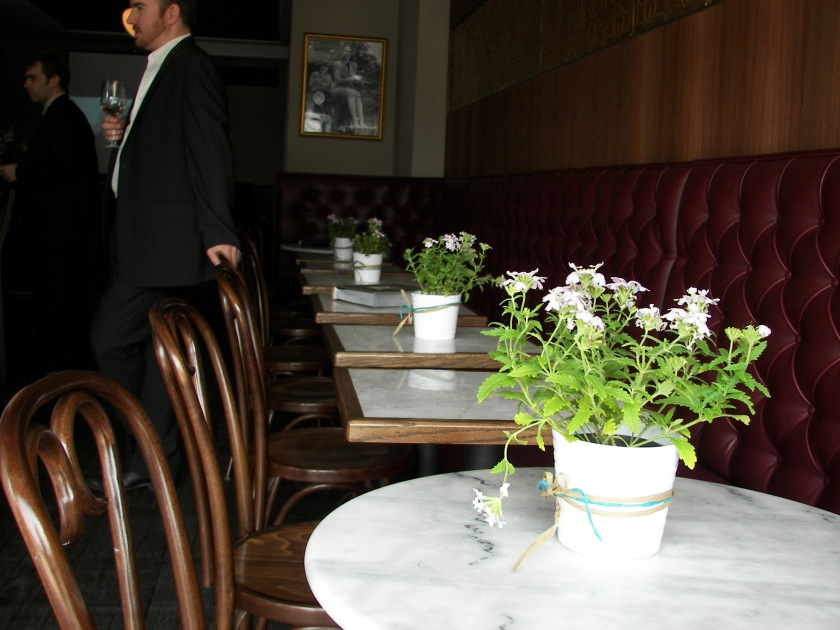 plants on tables